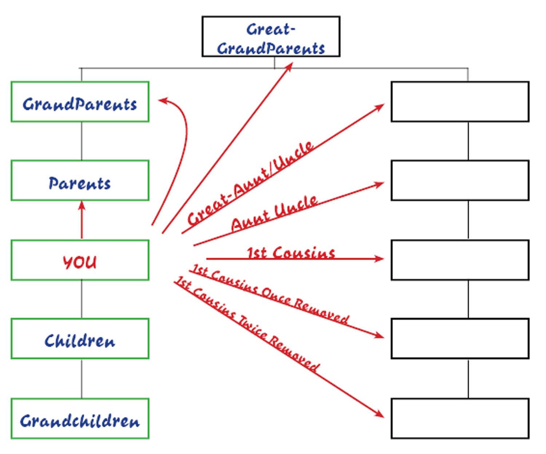 basicfamilytree-levels.jpg